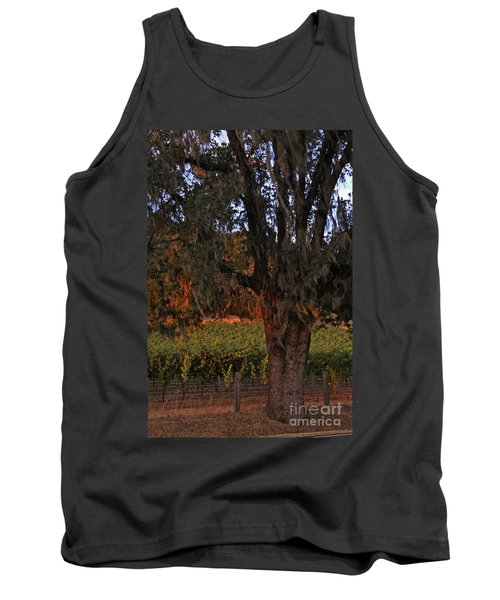 Oak Tree And Vineyards In Knight's Valley Tank Top