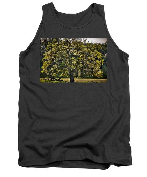 Oak Tree New Green Leaves Tank Top