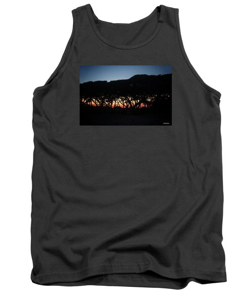 Oh Those Trees Tank Top by Phil Mancuso