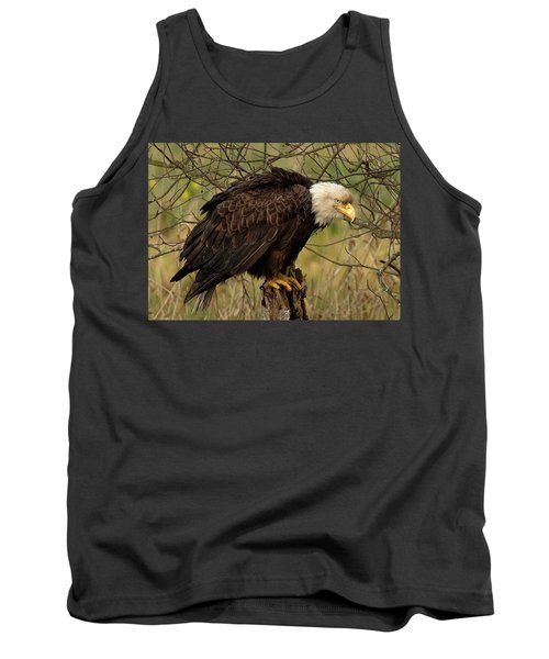 Old Eagle Tank Top by Sheldon Bilsker