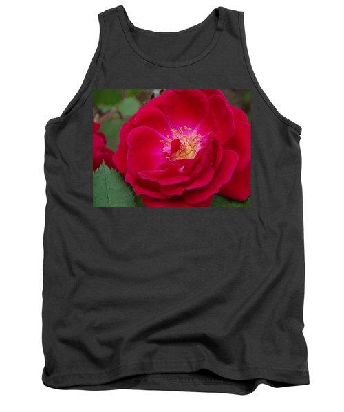 Old Homestead Rose Tank Top