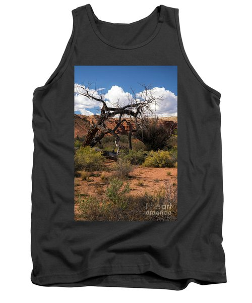 Old Tree In Capital Reef National Park Tank Top