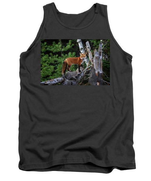 On The Lookout Tank Top by Gary Hall