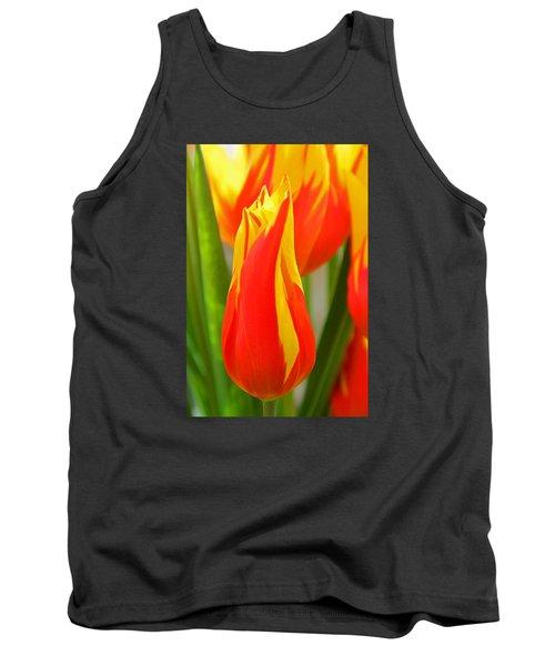 Orange And Yellow Tulips Tank Top