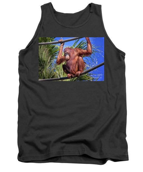 Orangutan On Ropes Tank Top by Stephanie Hayes