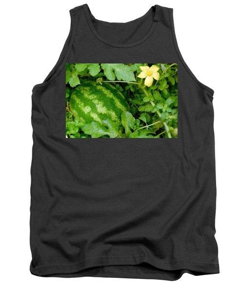 Organic Watermelon Tank Top