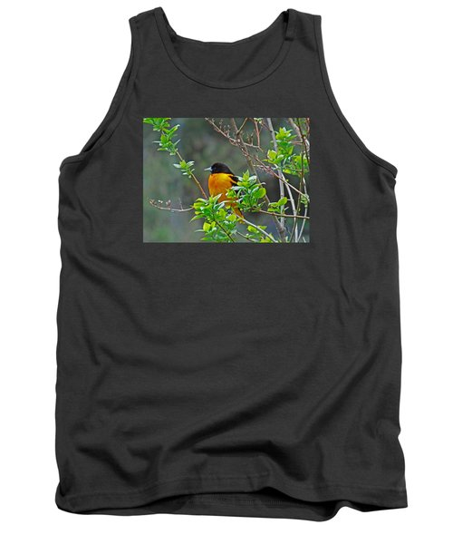 Oriole On The Lilac Tank Top by Larry Capra