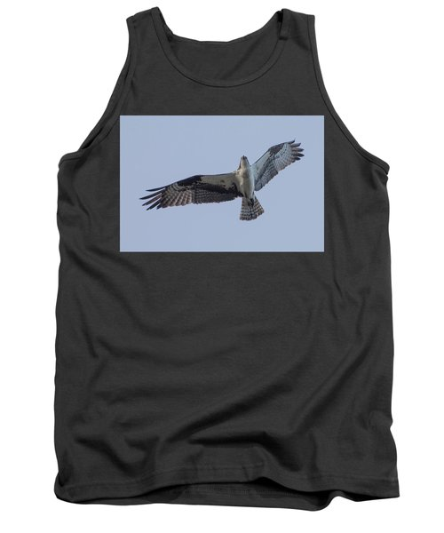 Osprey Tank Top by Keith Boone