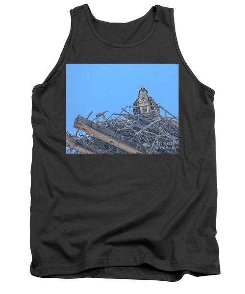 Osprey Nest Tank Top