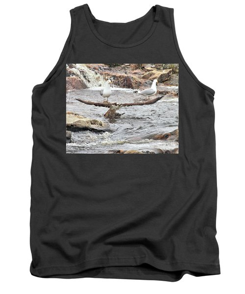 Tank Top featuring the photograph Osprey Takes Fish From Gulls by Debbie Stahre