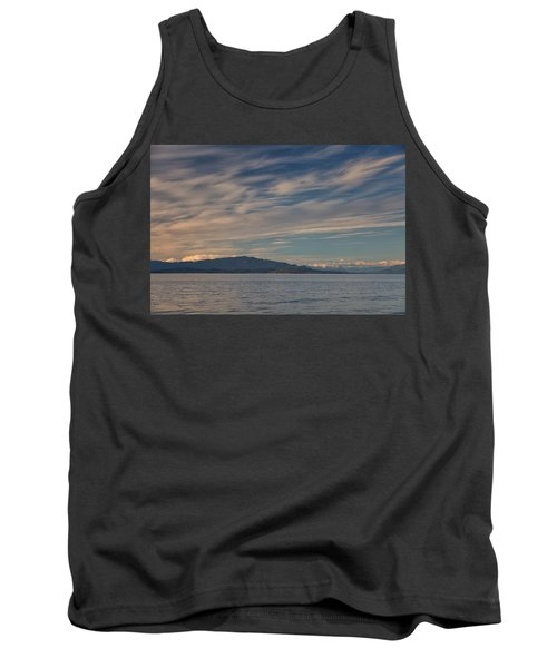 Out Like A Lamb Tank Top by Randy Hall