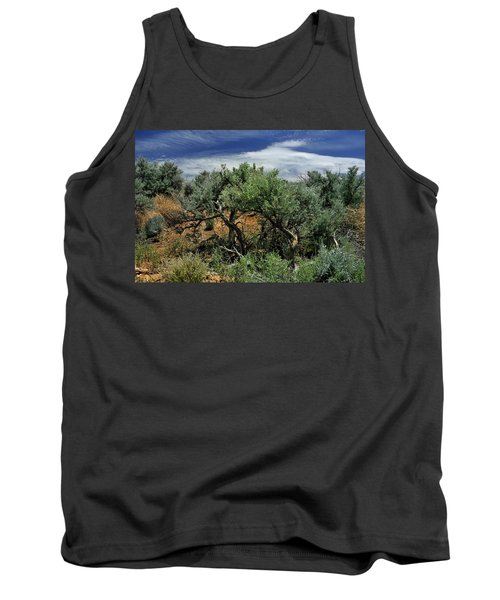 Out On The Mesa 3 Tank Top