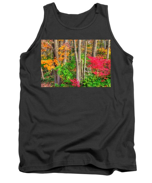 Pa Country Roads - Autumn Flourish - Harmony Hill Nature Area - Chester County Pa Tank Top by Michael Mazaika