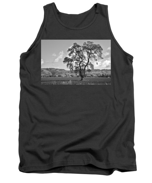 Pacheco Pass Tank Top by Sonny Marcyan