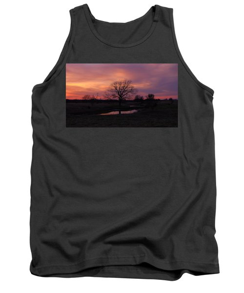 Tank Top featuring the photograph Painted Sky by Ricardo J Ruiz de Porras