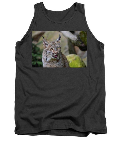 Panting Lynx Tank Top