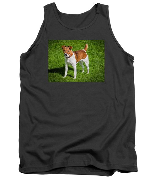 Parson Jack Russell Tank Top