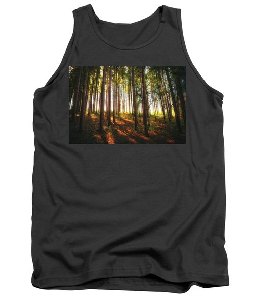 Peaceful Wisconsin Forest 2 - Spring At Retzer Nature Center Tank Top by Jennifer Rondinelli Reilly - Fine Art Photography