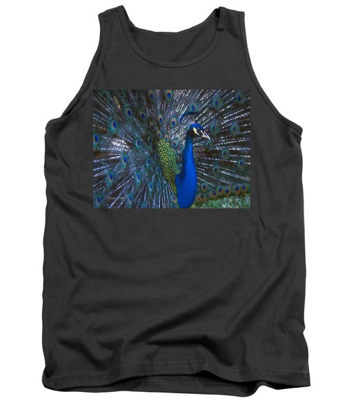 Tank Top featuring the photograph Peacock Splendor by Marie Hicks