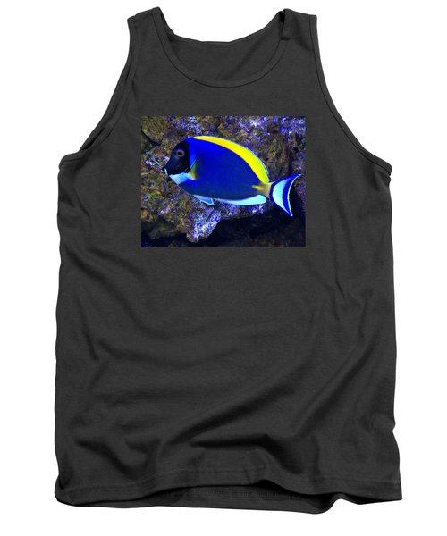 Blue Tang Fish  Tank Top by Kathy M Krause