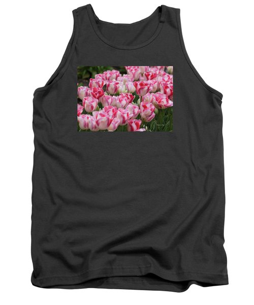 Peppermint Tulip Field IIi Tank Top