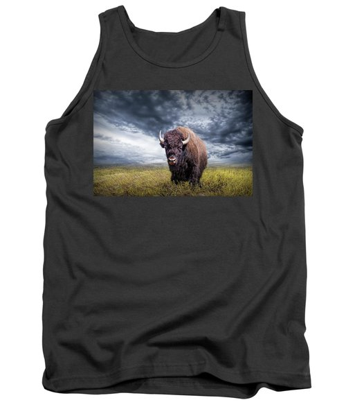 Plains Buffalo On The Prairie Tank Top