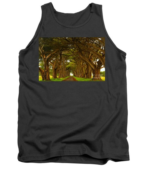 Point Reyes Cypress Tunnel Tank Top