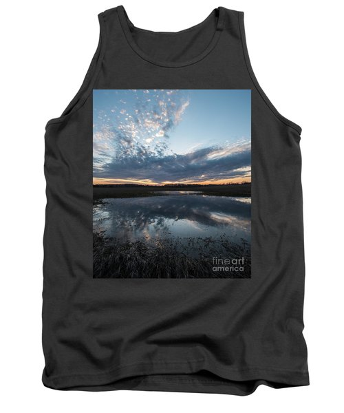 Pond And Sky Reflection3a Tank Top