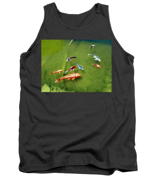 Pond With Koi Fish Tank Top