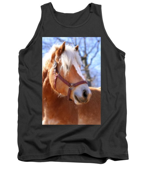 Tank Top featuring the photograph Portrait Of A Haflinger - Niko by Angela Rath