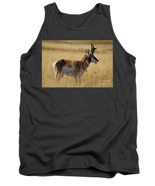 Pronghorn Antelope Tank Top