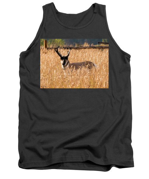 Tank Top featuring the photograph Pronghorn by Jennifer Ancker