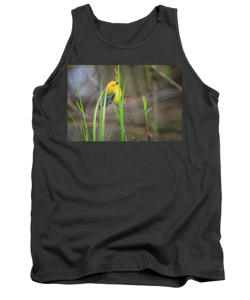 Prothonotary Warbler 5 Tank Top by Gary Hall