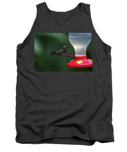 Purple-throated Mountain Gem Tank Top by James David Phenicie
