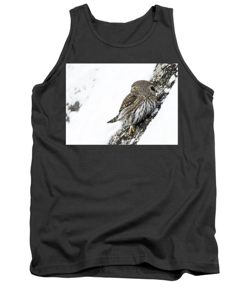 Pygmy Owl Tank Top