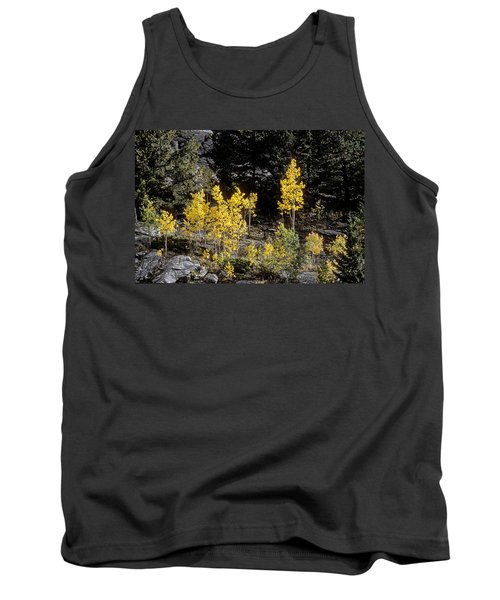 Aspens In Fall At Eleven Mile Canyon, Colorado Tank Top by John Brink