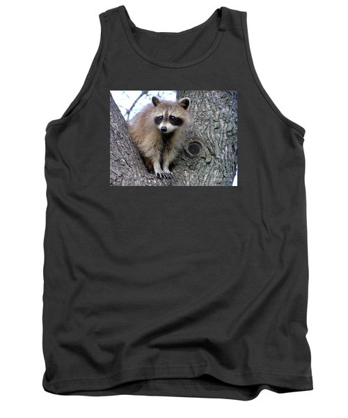 Raccoon Lookout Tank Top by Susan  Dimitrakopoulos