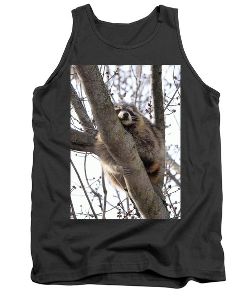 Afternoon Nap-raccoon Up A Tree  Tank Top