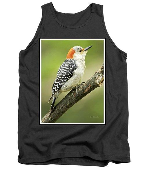 Red Bellied Woodpecker, Female On Tree Branch Tank Top