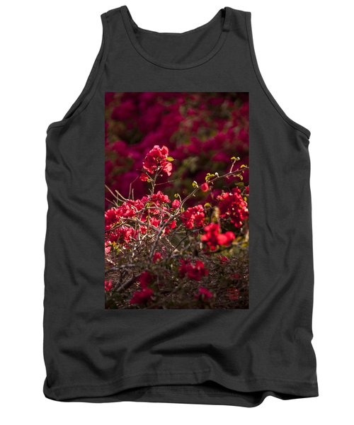 Red Flowering Quince Schrub Tank Top by Daniel Hebard