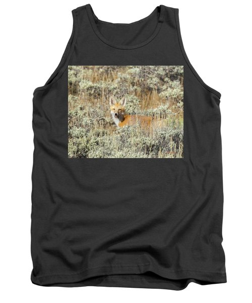 Red Fox In Sage Brush Tank Top