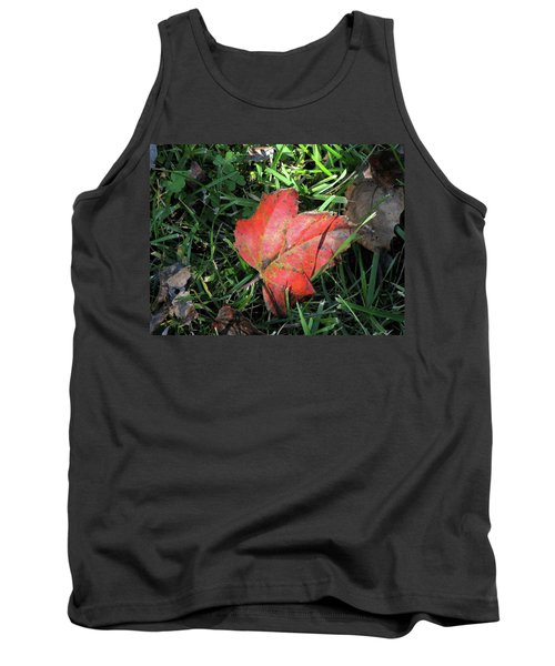 Red Leaf Against Green Grass Tank Top
