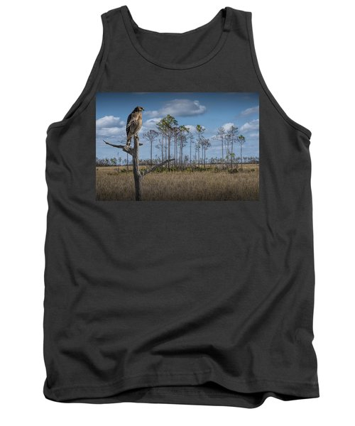 Red Shouldered Hawk In The Florida Everglades Tank Top