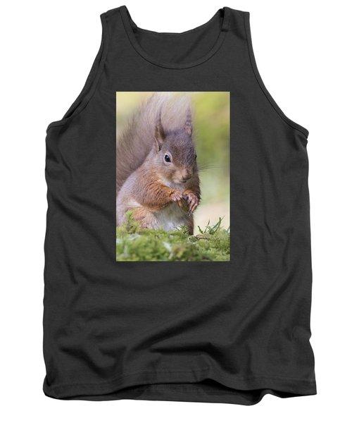 Red Squirrel - Scottish Highlands #1 Tank Top