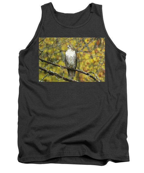 Red Tail Hawk 9887 Tank Top by Michael Peychich
