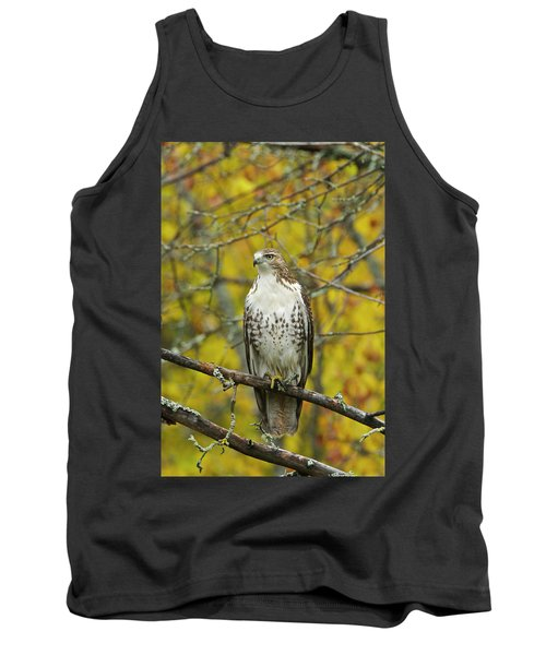 Red Tail Hawk 9888 Tank Top by Michael Peychich