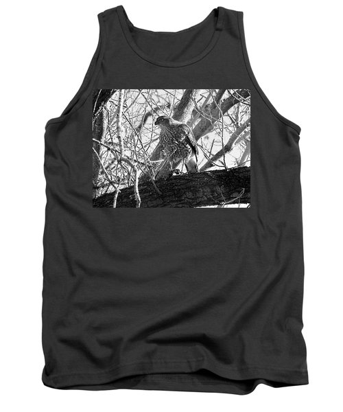 Red Tail Hawk In Black And White Tank Top