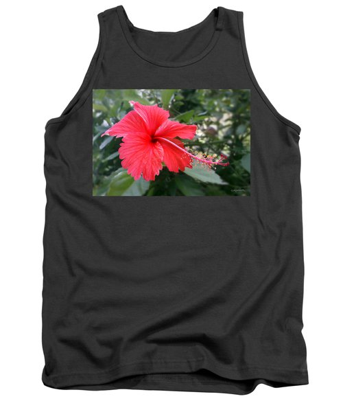 Red-tailed Flower Portrait Tank Top