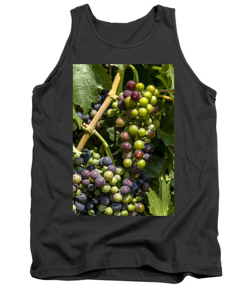 Red Wine Grape Colors In The Sun Tank Top