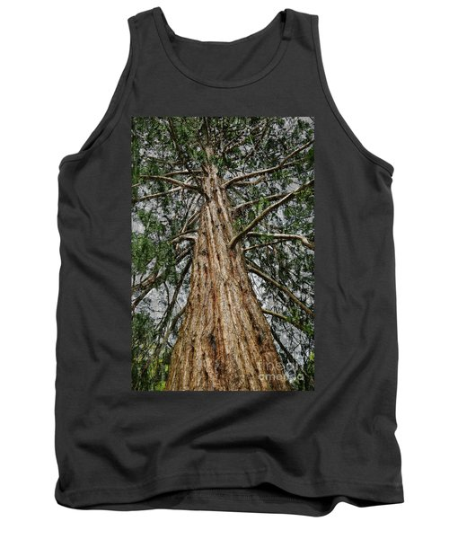 Redwood Reaches For The Sky Tank Top